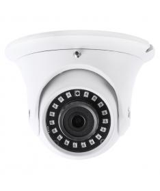 Ip Camera 2MPX 1080P Dome ottica fissa 3,6mm POE